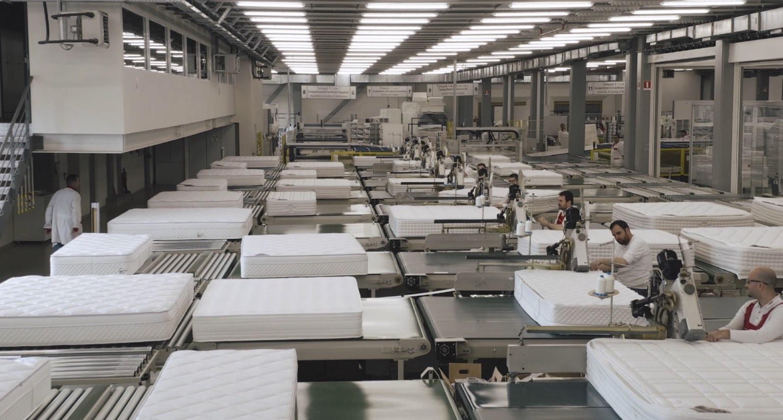 zenius-factory